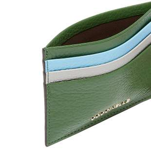 Coccinelle Metallic Soft Leaf/Pool/Dolphin E2FW5129501998 2